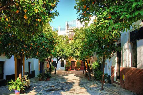Sevilla tiene un color especial 5