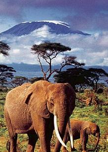 Vacaciones en Kenia 1