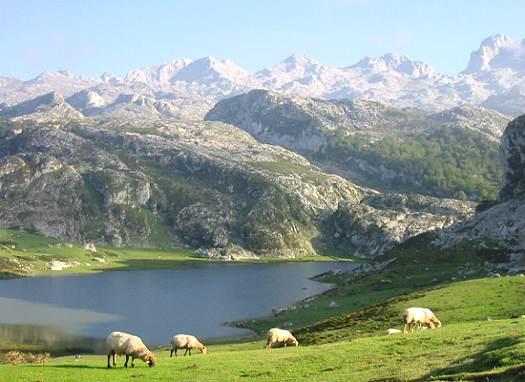 Ven a Cantabria, el paraíso del norte de España 4