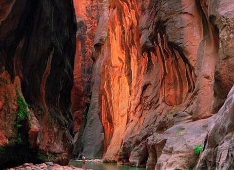 Parque Nacional de Zion en Utah, un destino ineludible 1