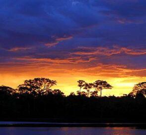 La Reserva Nacional Pacaya-Samiria en Perú 3