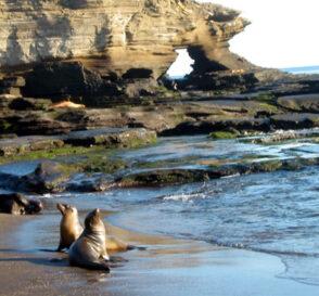 Las Islas Galápagos, un paraíso en el Ecuador 2