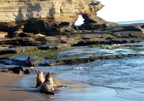 Las Islas Galápagos, un paraíso en el Ecuador 8