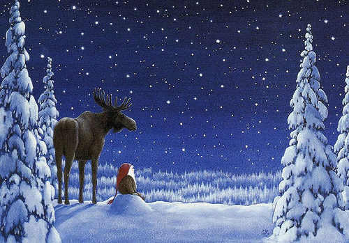 Celebra la Navidad en Finlandia 8