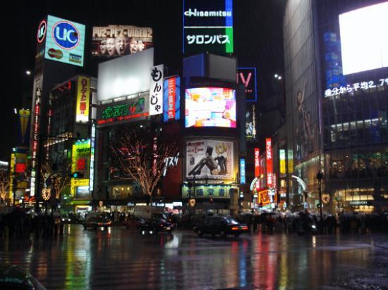 El Barrio de Shibuya en Tokyo