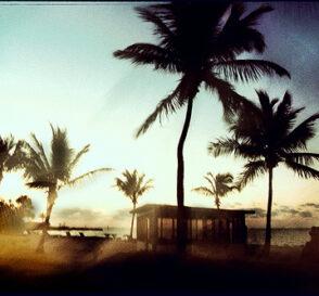Miami, ciudad cosmopolita 2