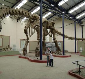 Museos de Dinosaurios en la Patagonia 2