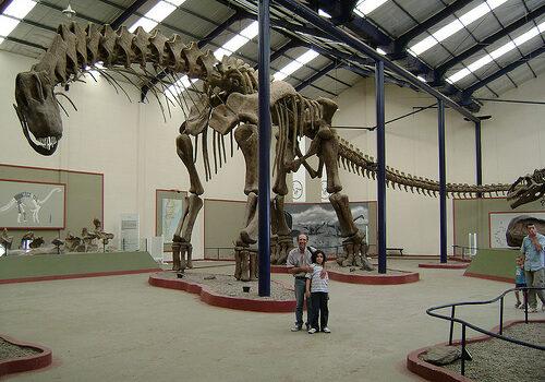 Museos de Dinosaurios en la Patagonia 6