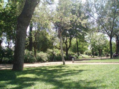 Los parques más emblemáticos de Barcelona