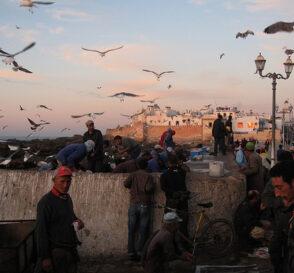 Essaouira, en el desierto de Marruecos 1