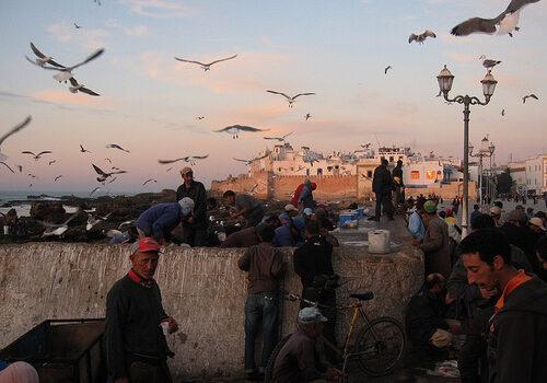 Essaouira, en el desierto de Marruecos 9