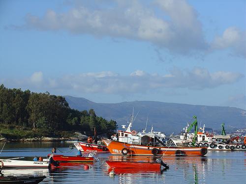 A Illa de Arousa, paraíso del mariscador 1