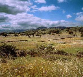 Comarca de la Sierra en Huelva 2