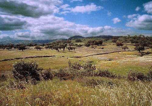 Comarca de la Sierra en Huelva 12
