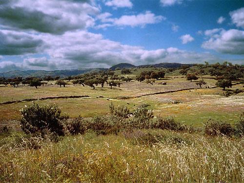 Comarca de la Sierra en Huelva 1
