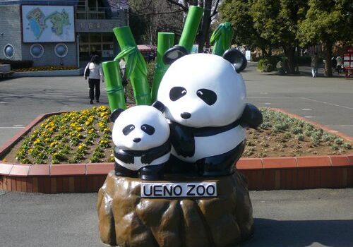 El Zoo de Ueno en Tokio 14