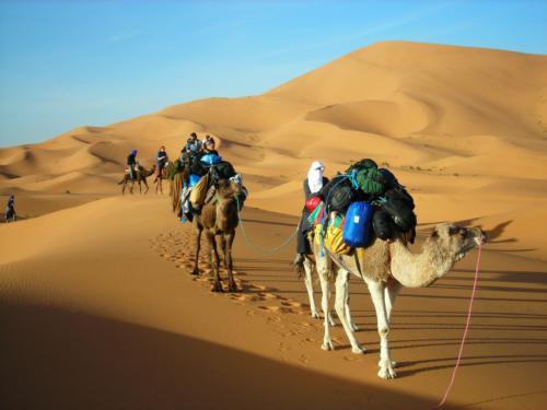 Consejos para un paseo en camello o 4x4 en Marruecos