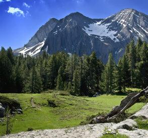Pirineo Aragonés, mucho que ver 2