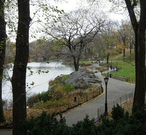 Paseo por Central Park en Nueva York 2