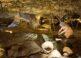 Cueva de las Ventanas en la provincia de Granada 5