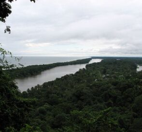 Parque Nacional Tortuguero en Costa Rica 2