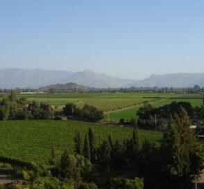 Valle del Aconcagua en Chile 2