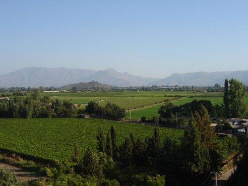 Valle del Aconcagua en Chile 1