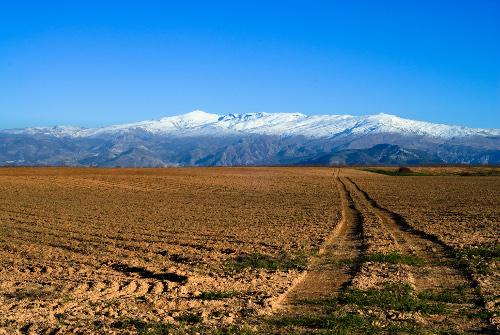 Sierra Nevada, algo más que esquí