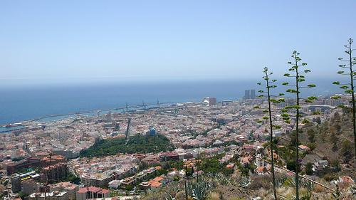 Bajo el calor de Tenerife 15