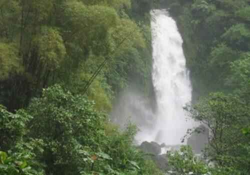 Dominica, la isla de la naturaleza en el Caribe 5