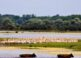 El Delta del Danubio, un paraíso de la naturaleza 3