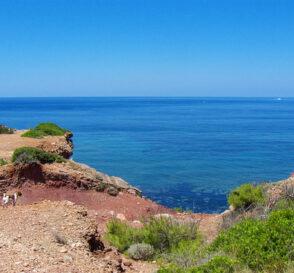 Elige tu isla para las vacaciones 2