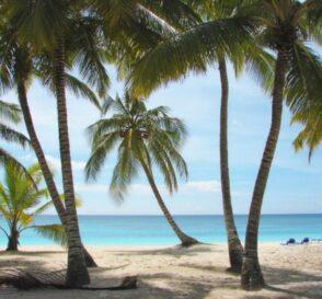 Playas y diversión en Punta Cana 1