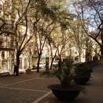Barrio de borne en Barcelona