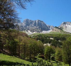 Excursión a los pirineos aragoneses 4