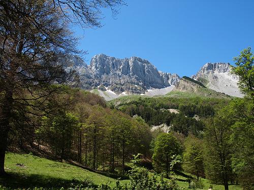 Excursión a los pirineos aragoneses 1