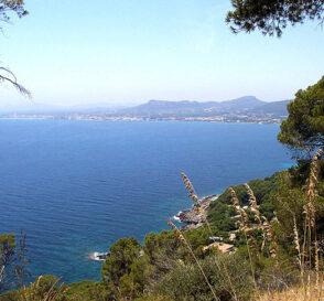 Museos en Mallorca 2