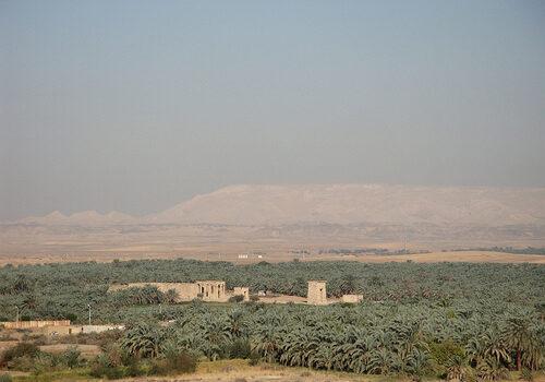 El oasis de de Kharga 10