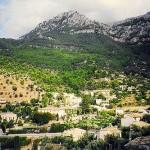 Naturaleza en la isla de Mallorca