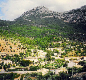 Naturaleza en la isla de Mallorca 2