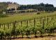 Florencia y la comarca del Chianti 5
