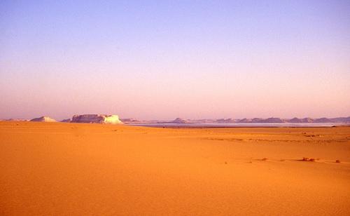 Turismo de naturaleza en Egipto 5