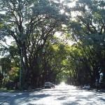 Belgrano, barrio desconocido de Buenos Aires
