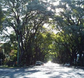 Belgrano, barrio desconocido de Buenos Aires 3