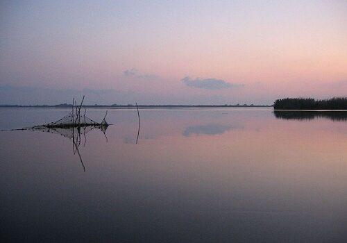 Delta del Danubio en Rumanía 1