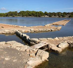 Un paraíso cercano, Formentera 1