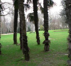 Rincones de Donostia 1