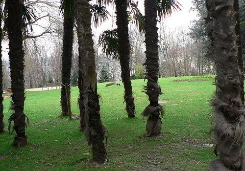 Rincones de Donostia 5