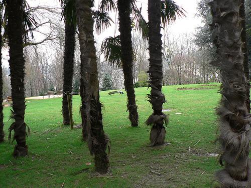 Rincones de Donostia
