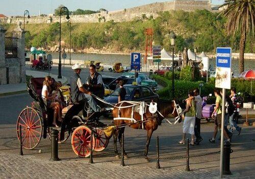 Pasear en coche de caballos por La Habana 8